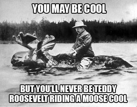 Being Teddy Roosevelt While Riding a Moose Through a River Cool Meme being teddy roosevelt while riding a moose through a river cool meme