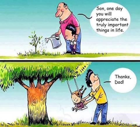Image result for memes of tree planting