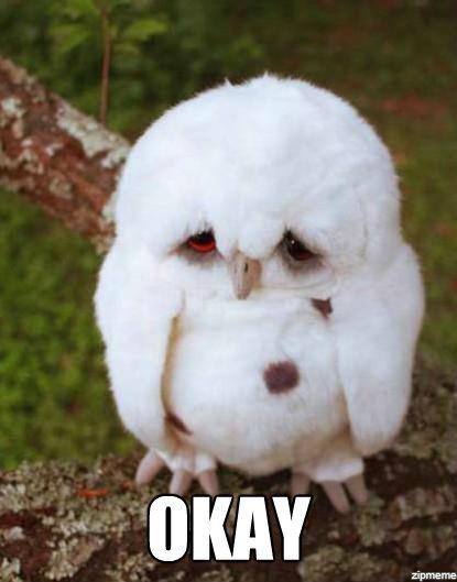 Sad Owl Furby With Puppy Dog Eyes