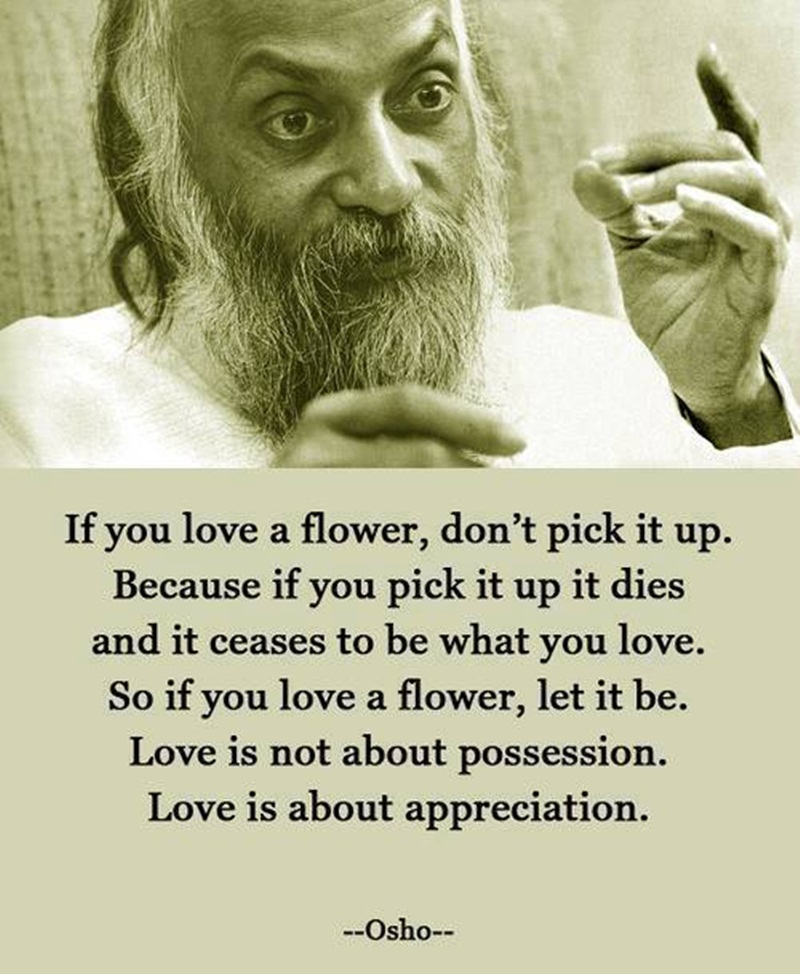 Love Is Quote: If You Love A Flower, Don't Pick It Up Quote By Osho