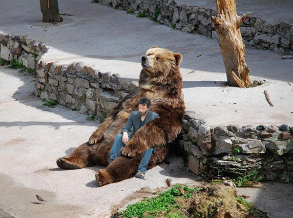 Sad Bear Holds Sad Keanu Reeves As They Have a Deep Moment Of Thought About This Fragile Life sad bear holds sad keanu reeves as they have a deep moment of