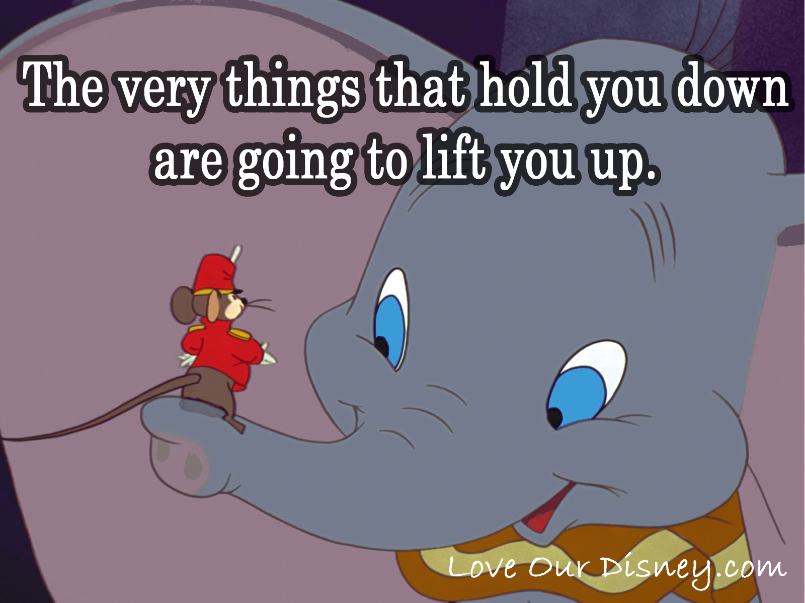 Dumbo Quotes Endearing Timothy Qmouse Cheers Dumbo Up With This Inspiring Quote