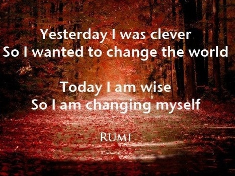 Rumi Quote Enchanting Rumi Quote On Being Clever Vswise In The World